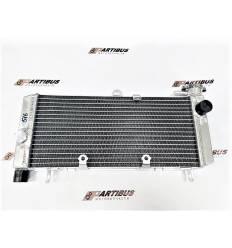 Радиатор охлаждения для Honda CB600F Hornet 98-06