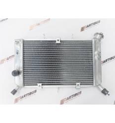 Радиатор охлаждения Yamaha XJ6 Diversion / FZ6R 09-16