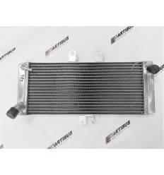 Радиатор охлаждения Suzuki GSF1250 Bandit 07-14/ GSX 650F 08-16